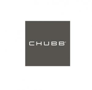 CHUBBWEBGREY.png