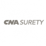 CNAWEBGREY-copy-1.png